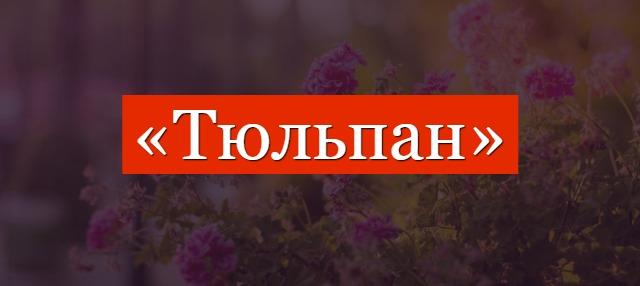 Тюльпан фонетический разбор слова