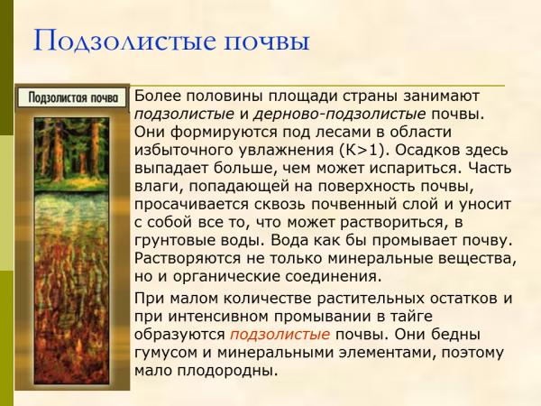 Краснодарской дерново подзолистые почвы белоруссии рука пройдет пройме
