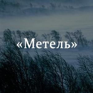 Краткое содержание «Метель»