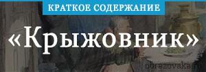 Краткое содержание «Краткое содержание «Крыжовник»»
