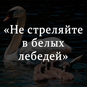 Краткое содержание «Не стреляйте в белых лебедей»