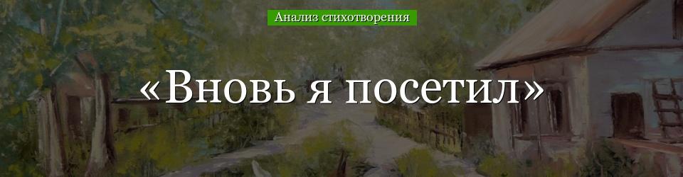 Анализ стихотворения А. С. Пушкина Вновь я посетил