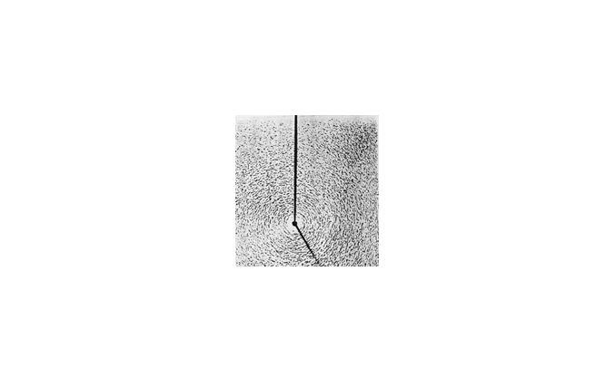 Демонстрация силовых линий магнитного поля от прямого провода с током с помощью железных опилок: