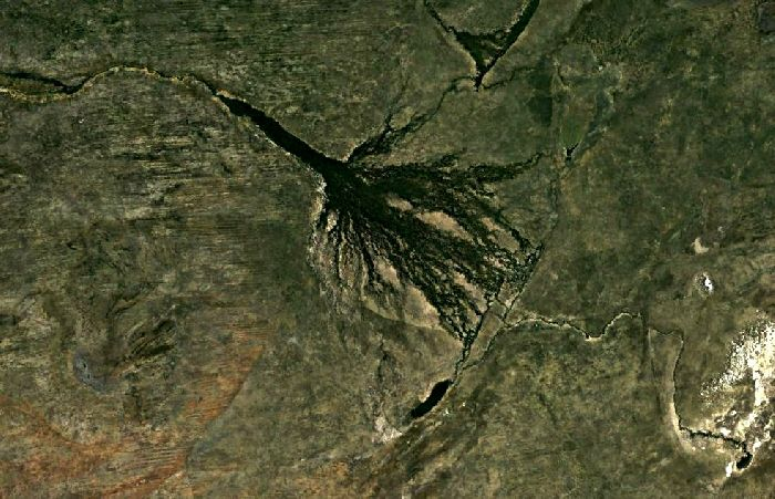 Дельта реки Окаванго, снимок из космоса