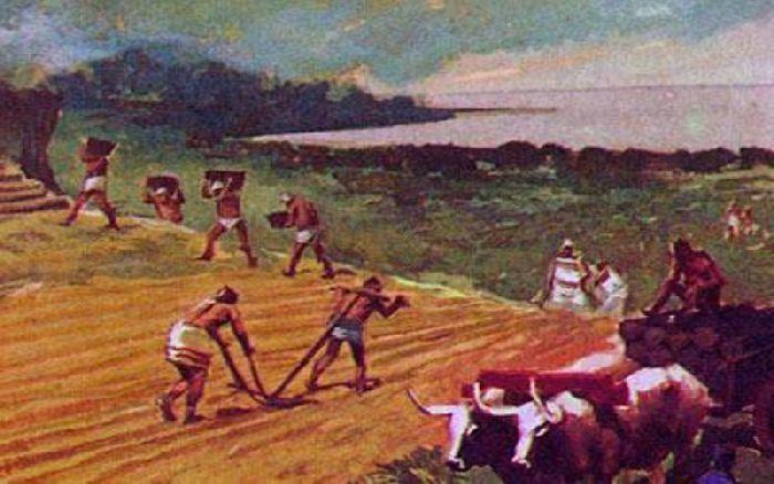 Земледелие в Древней Индии