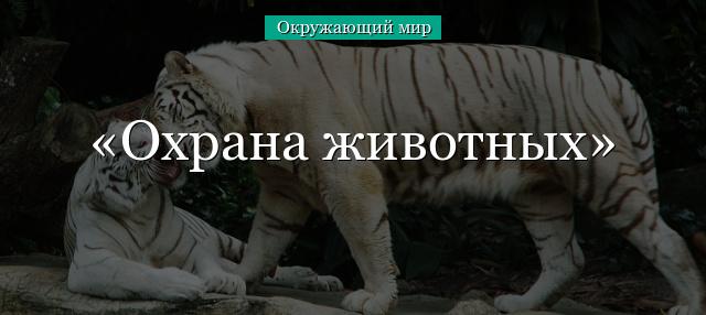 Доклад по биологии охрана животных 5901