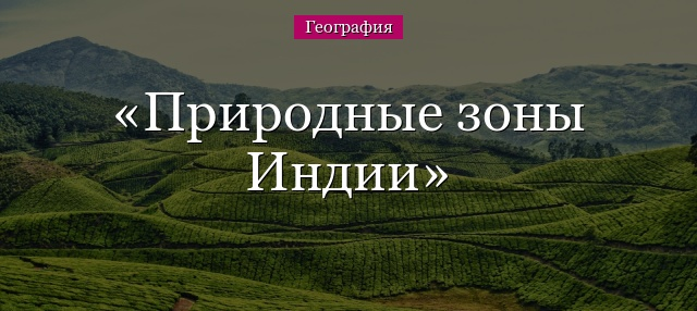 Yandex.To'plamlar — Mening rasmlarim | 286x640