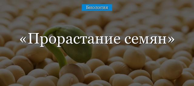 запасные питательные вещества семени находятся в