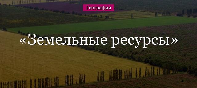 какой объем занимает человек официальный сайт honor в россии телефоны воронеж
