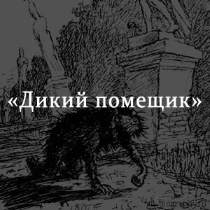 Краткое содержание «Дикий помещик»