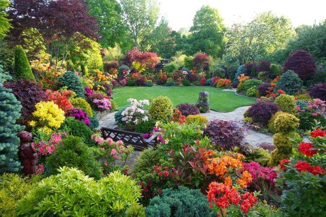 Морфологический разбор «саду»
