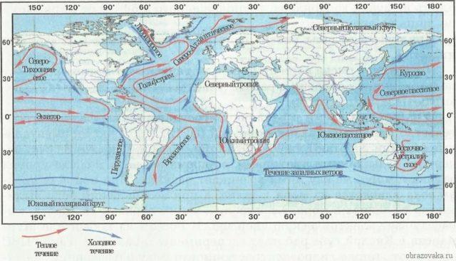 Схема течений мирового океана фото 665