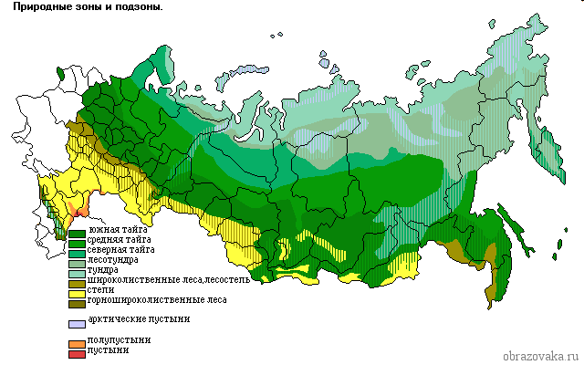 Природно-климатические зоны России: таблица, описание и особенности