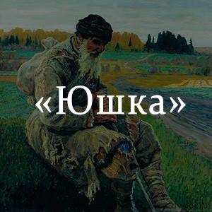 Краткое содержание «Юшка»