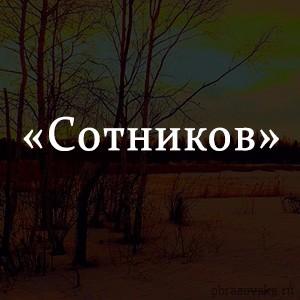 Краткое содержание «Сотников»