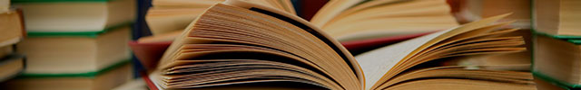 Тесты по литературе 11 класса