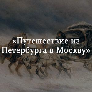 Краткое содержание «Путешествие из Петербурга в Москву»