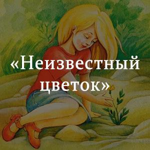 Краткое содержание «Неизвестный цветок»