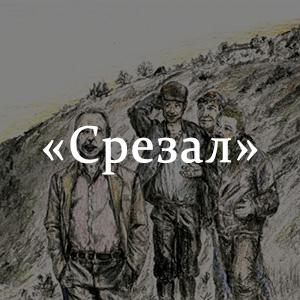 Краткое содержание «Срезал»