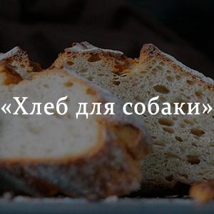 Краткое содержание «Хлеб для собаки»