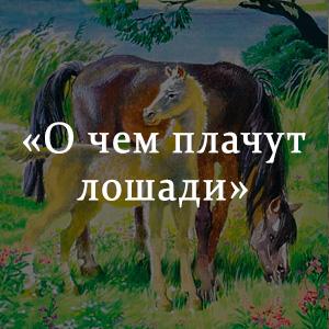 Краткое содержание «О чем плачут лошади»