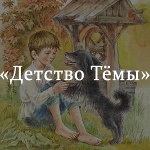 Краткое содержание «Детство Темы»