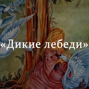 Краткое содержание «Дикие лебеди»