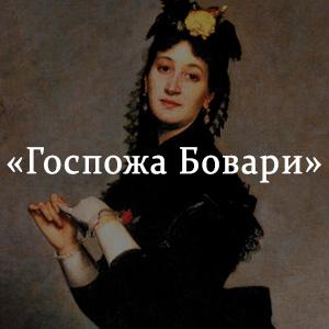 Краткое содержание «Госпожа Бовари»