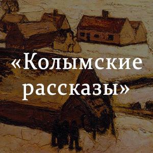 Краткое содержание «Колымские рассказы»