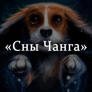 Краткое содержание «Сны Чанга»