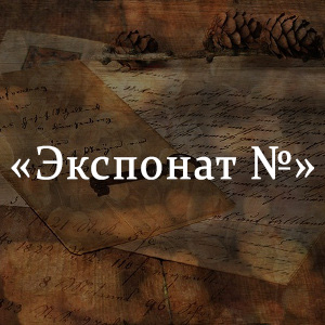 Краткое содержание «Экспонат №»