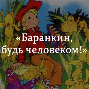 Краткое содержание «Баранкин, будь человеком!»