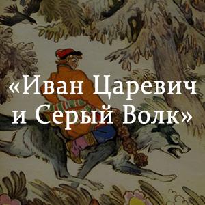 Краткое содержание «Иван Царевич и Серый Волк»