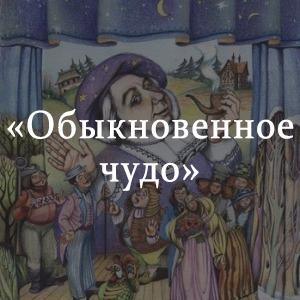 Краткое содержание «Обыкновенное чудо»