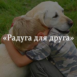Краткое содержание «Радуга для друга»