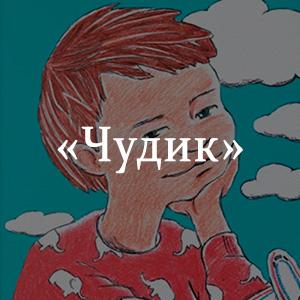 Краткое содержание «Чудик»
