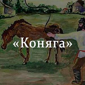 Краткое содержание «Коняга»