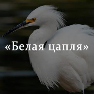 Краткое содержание «Белая цапля»