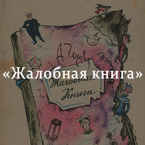 Краткое содержание «Жалобная книга»