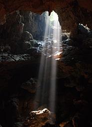 Краткое содержание «Луч света в тёмном царстве»